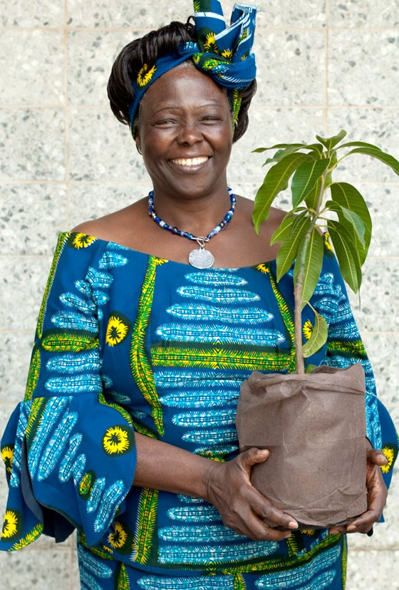 https-::feminismandreligion.files.wordpress.com:2013:09:wangari-maathai-1